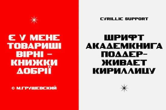 SK Akademkniga font free