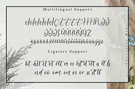 Barattiel font download