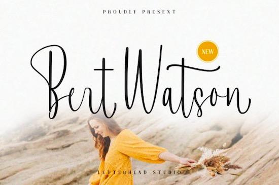 Bert Watson font free download