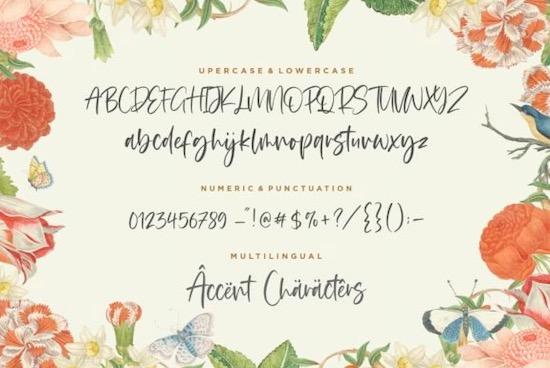 Blackbone font download