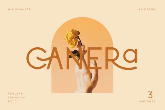 Canera font free download