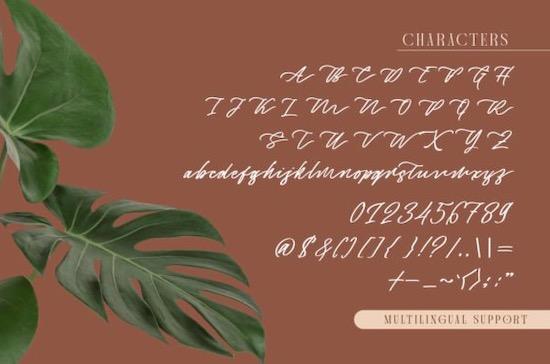 Captivate Script font free