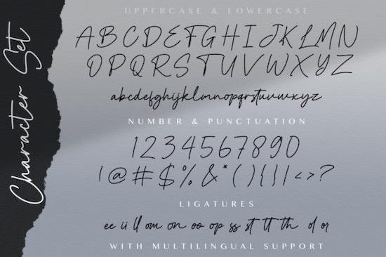 Cinta Monyett font download