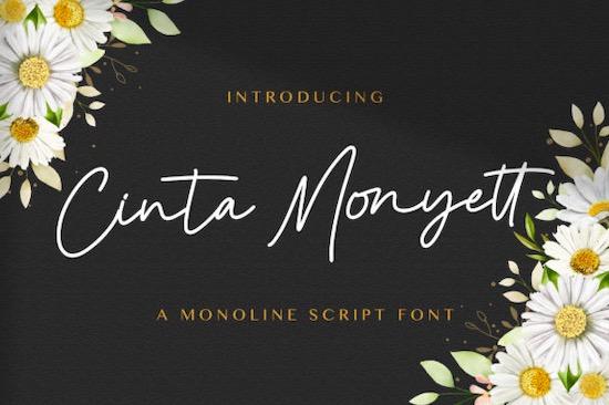 Cinta Monyett font free download