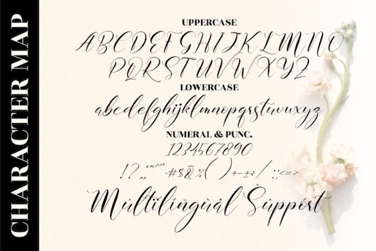 Delmore font download