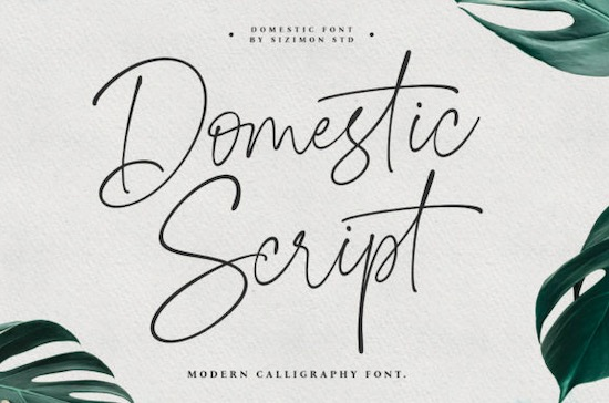 Domestic font free download