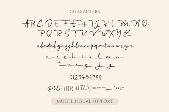 Holymore font download