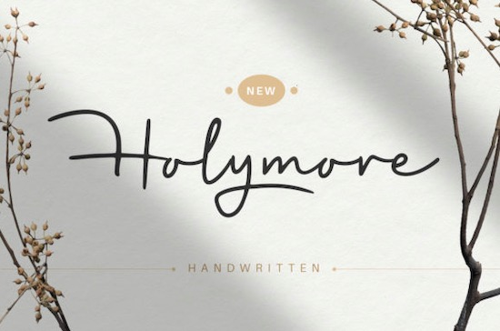 Holymore font free download