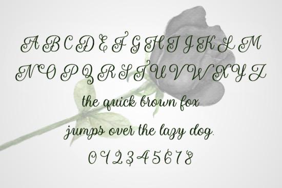 Naryssa font download