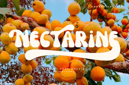 Nectarine font free download