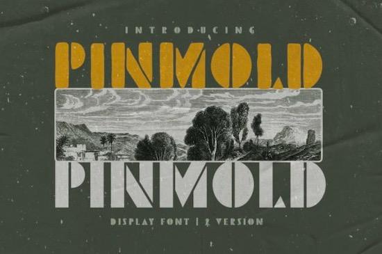 Pinmold font free