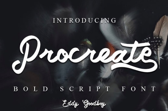 Procreate fonts free download