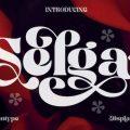 Selga font free download
