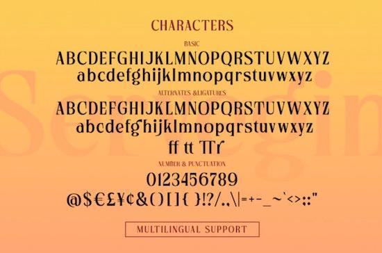 Servegin font download