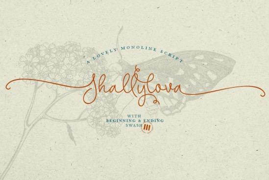 Shallylova font free download