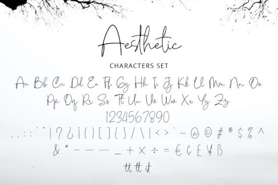 Aesthetic Font download