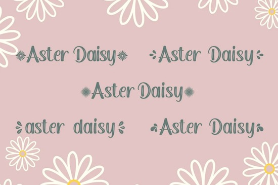 Aster Daisy Font free