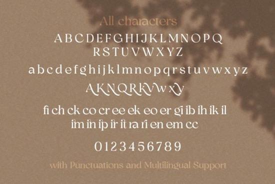 Bhinerka Font download