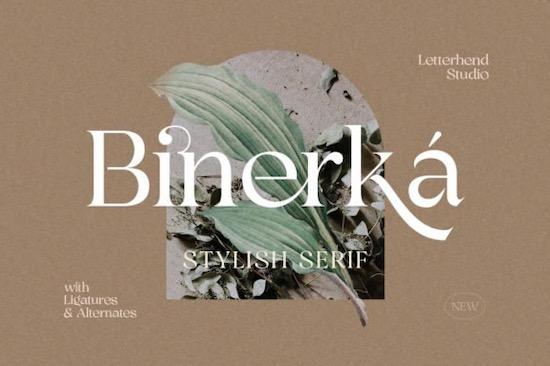 Bhinerka Font free download