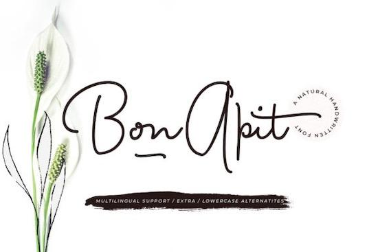 Bon Apit Font free download