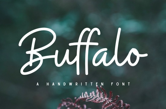 Buffalo Font free download
