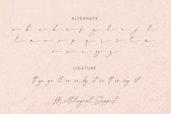 Felicity Font