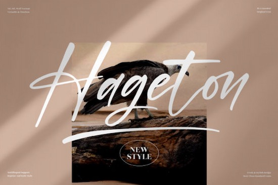 Hageton Font free download