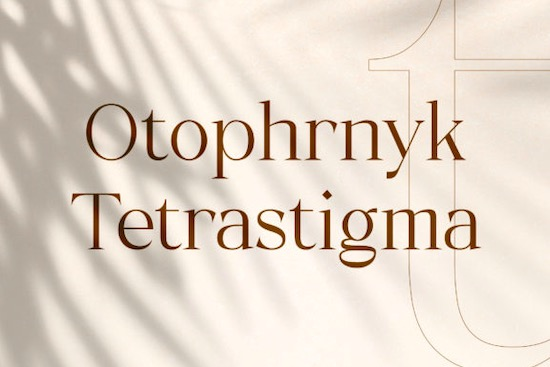 Typhone Font