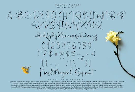 Walnut Candy Font download