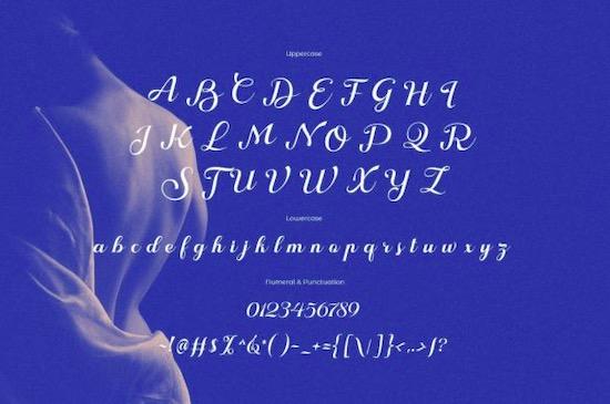 Nokarin Font download