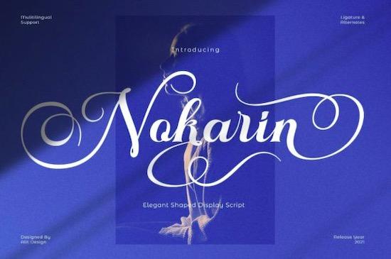 Nokarin Font free download