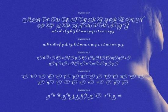Nokarin Font free