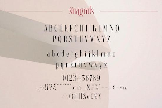 Snagrids Font download