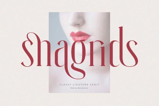 Snagrids Font free download