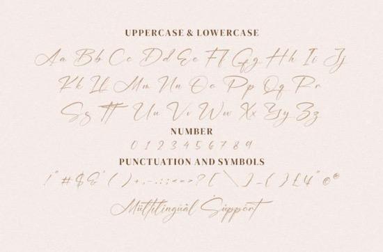 William Narasi Font download